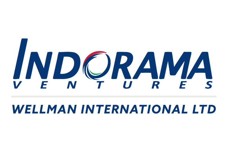 WELLMAN INTERNATIONAL